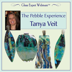 Webinar DVD/ Tanya Veit The Pebble Experience
